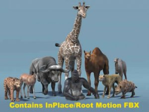 African Animal Pack 2 for free unityassets4free)