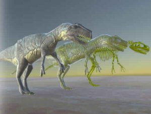 Allosaurus And Skeleton