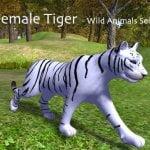 Animated Tigers – Female