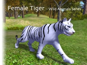 Animated Tigers Female for free (unityassets4free)