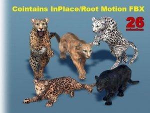 Big Cats Bundle (3 pcs) for free (unityassets4free)