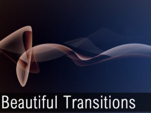 Read more about the article Beautiful Transitions