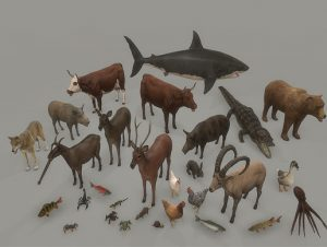 Animal-pack-deluxe-300x226