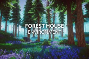 Forest House Environment
