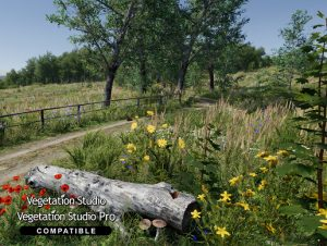 Meadow Environment – Dynamic Nature