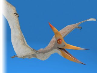 PteranodonDinosaur