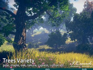 Read more about the article Trees Variety