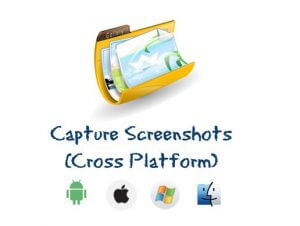 Capture and Save (Pro)