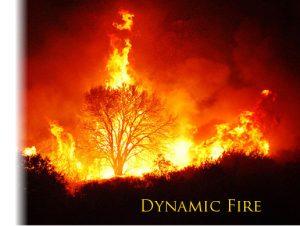 Dynamic Fire System