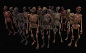 Skeleton Zombies Low-poly 3D model