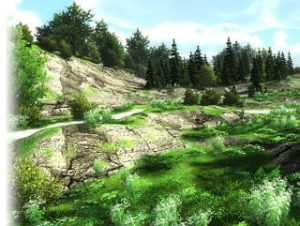 Read more about the article Lowpoly trees and grasses