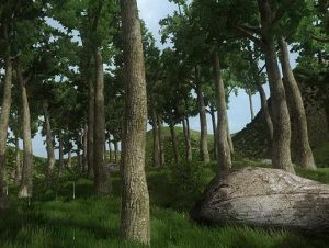 Tall Trees Forest Pack 1