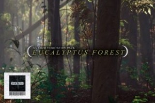C.V.P – Eucalyptus Forest