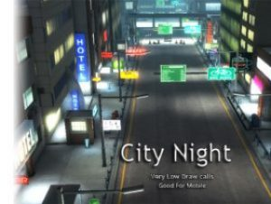 Read more about the article City Night