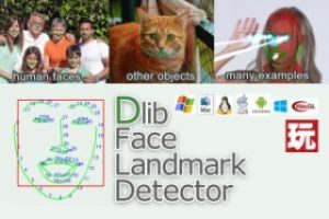 Read more about the article Dlib FaceLandmark Detector
