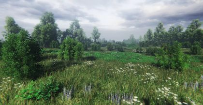 Nature Package – Swamp,Forest Environment