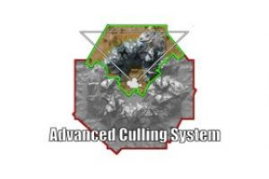 Read more about the article Advanced Culling System