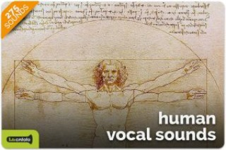 Human Vocal Sounds