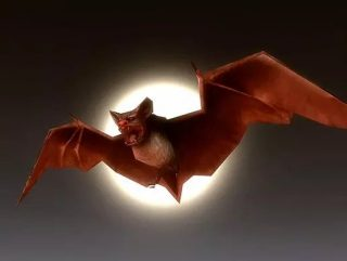 Read more about the article Bat Monster Beast