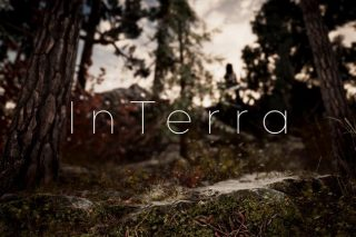 Read more about the article InTerra ~ Terrain Features